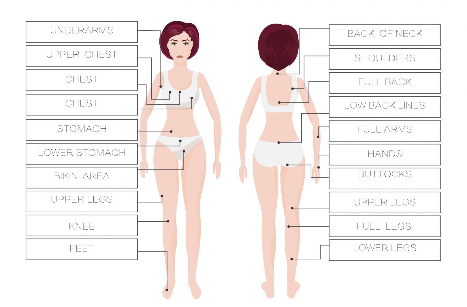 La méthode de dépilation STELLA® est efficace pour toutes les zones du corps